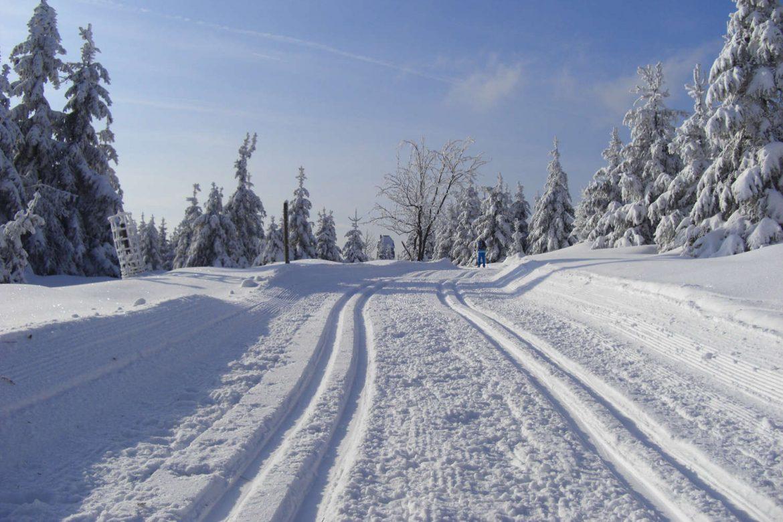 Schnee im Harz?